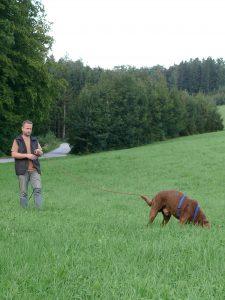 Fährtenhundekurs